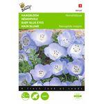 Haagbloem Hemelsblauw