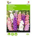 Ridderspoor Ajacis hyacinthbloemig