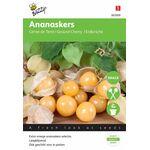 Ananaskers