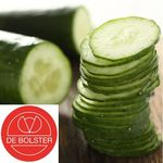 Biologische Komkommer 'Telegraph Improved'