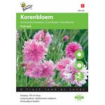 Korenbloem Pink Ball