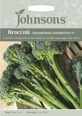 Broccoli Groen Inspiration F1