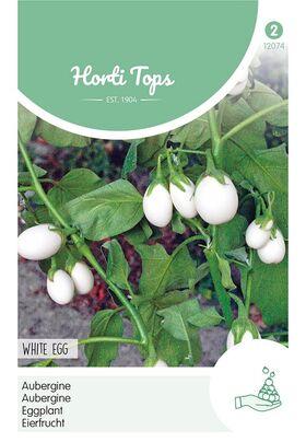 Aubergine White Egg