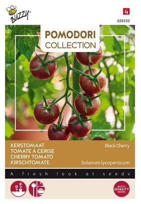 Pomodori Kers-Tomaten Black Cherry