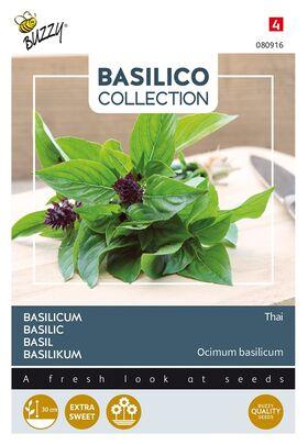 Basilicum Thai