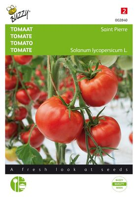 Tomaten St. Pierre, grote rode