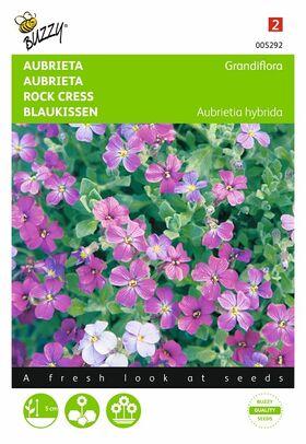 Aubrietia Blauwkussen Gemengde kleuren