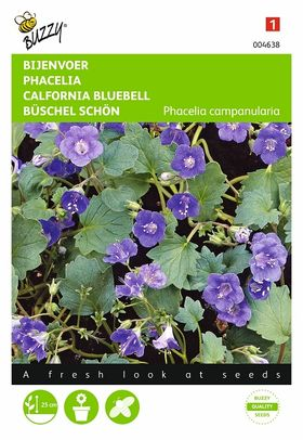 Bijenvoer, Phacelia Campanularia