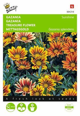 Gazania Sunshine grootbloemig