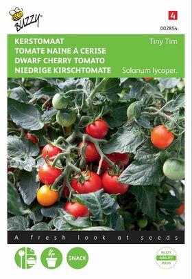 Kers-tomaat Tiny Tim laag groeiend