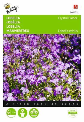 Lobelia,Chrystal Palace pendula (Hanglobelia)