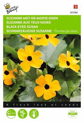 Suzanne met de mooie ogen geelbloeiende klimmer