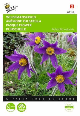Wildemanskruid Violetblauwe bloemen