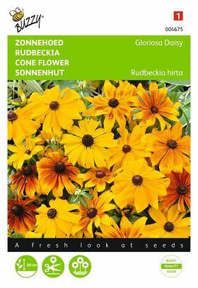 Zonnehoed, Gloriosa Daisy reuzenbloemen