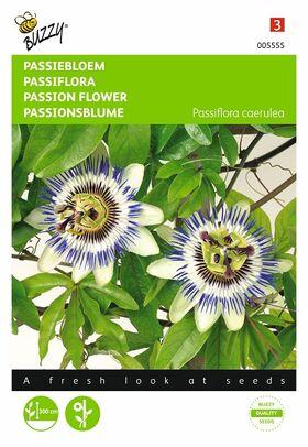 Passiebloem Sterachtige bloemen