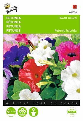 Petunia Laag Gemengd