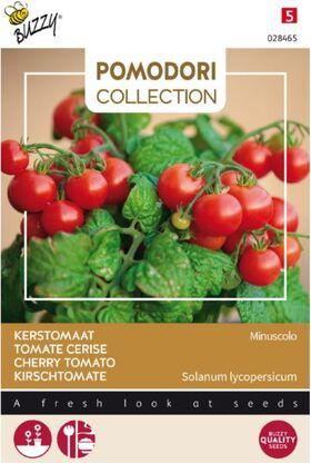Pomodori Tomaten Minuscolo