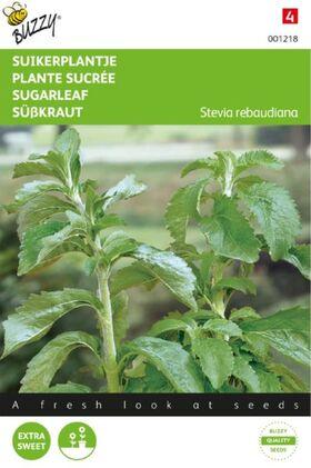 Stevia Rebaundiana
