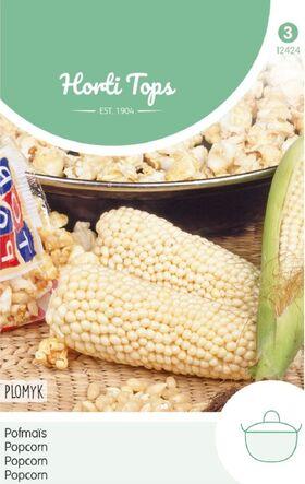 Popcorn Plomyk
